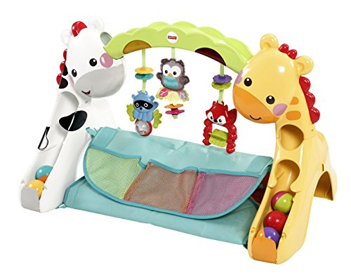 Tapis Evolutif de Fisher Price